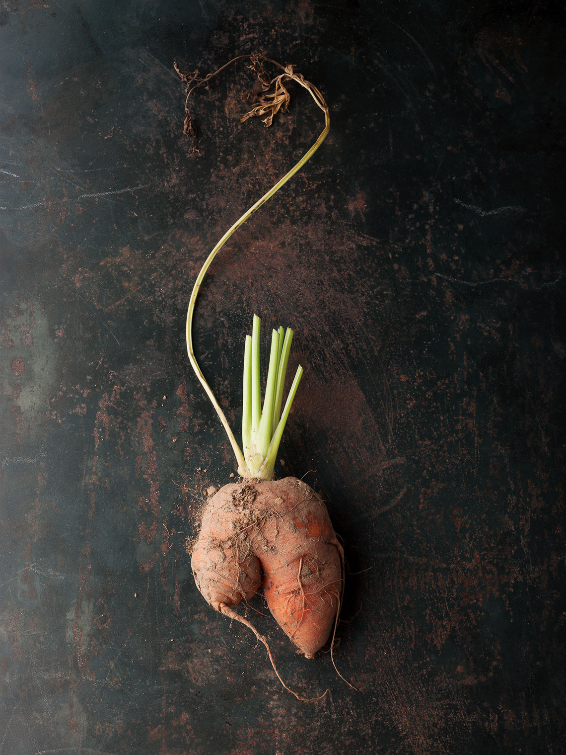 Roots-Doras-sweet-potato-0010-copy