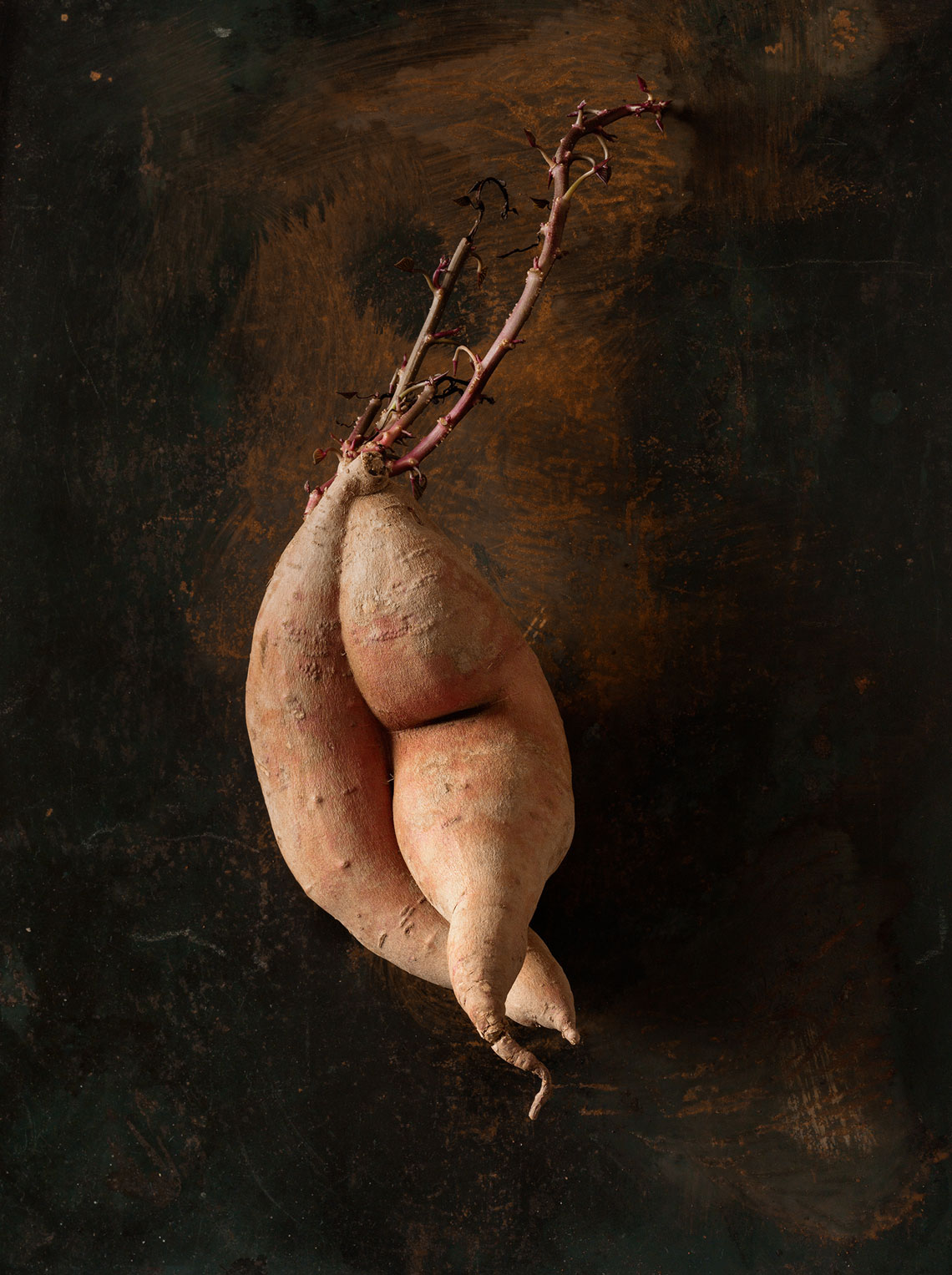 Roots_Series--Doras_sweetpotato-27670-as-Smart-Object-1
